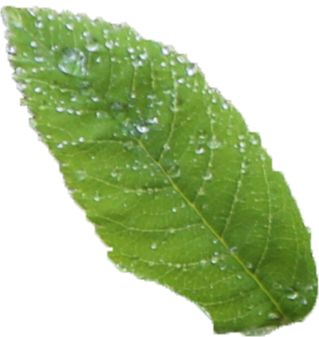 Ekologinen vaihtoehto - Pyrimme aina käyttämään lähintä mahdollista maa-aineksen ottopistettä ja paikallista toimittajaa.